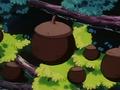 Blk Apricorn anime.png